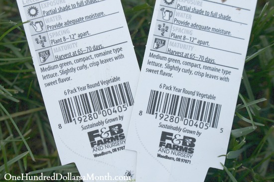 What Does Days to Maturity Mean on a Seed Packet or Vegetable Starts