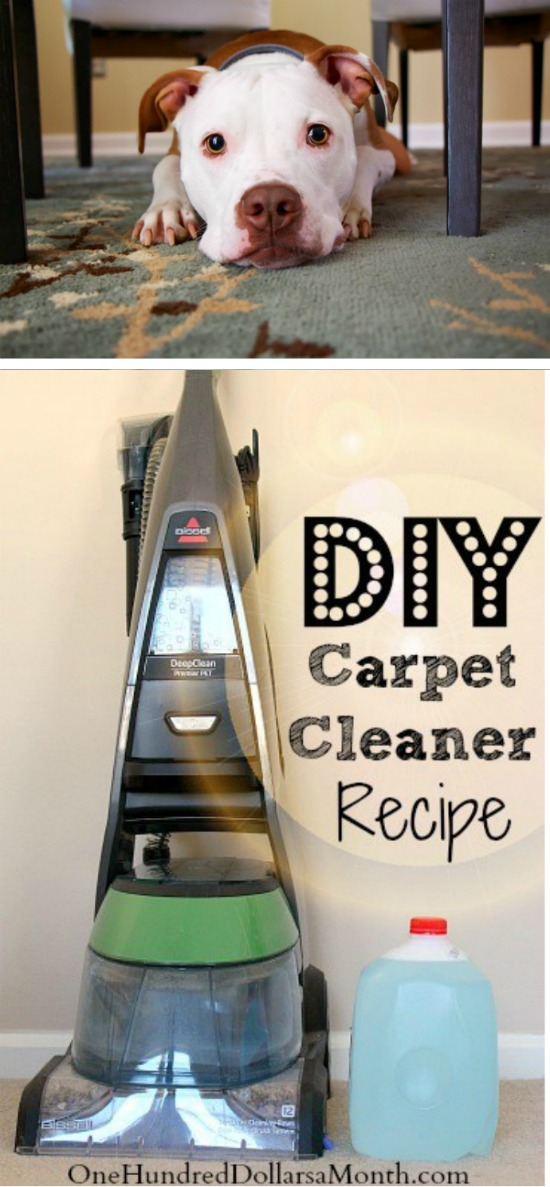 Tips for Steam Cleaning Carpets + My Favorite DIY Carpet ...