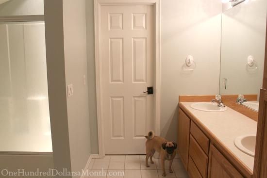 bathroom remodel pictures before