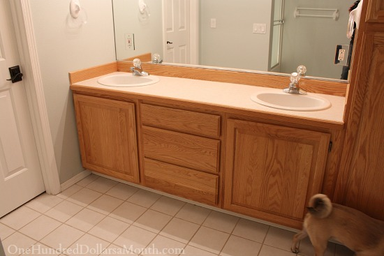 Double oak vanityJack and Jill Bathroom Remodel Part 1   One Hundred Dollars a Month. Tile Bathroom Remodeling Part 1. Home Design Ideas