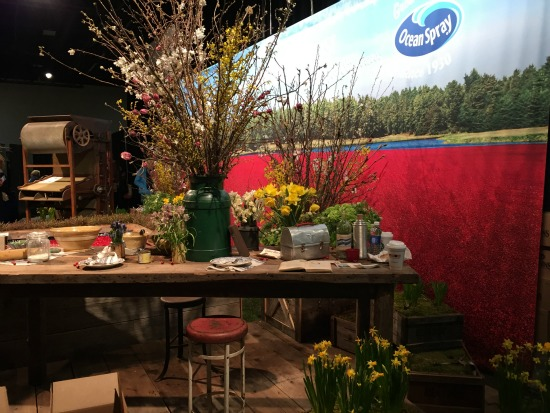 flower show 2