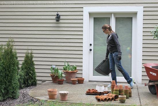 moving plants around