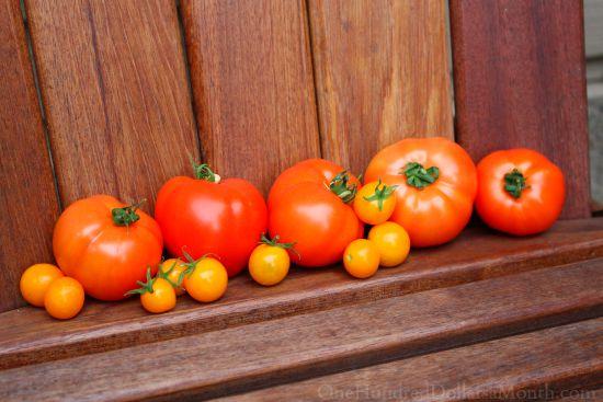 stupice sun gold tomatoes