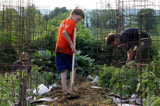 kids working in garden