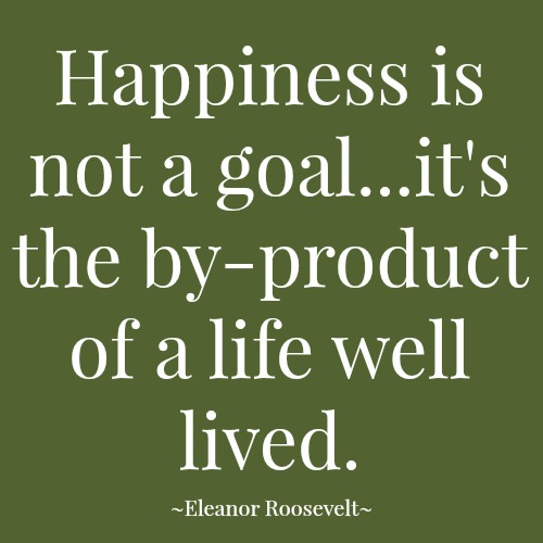quotes - happiness is not a goal