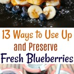 13 Ways to Use Up and Preserve Fresh Blueberries