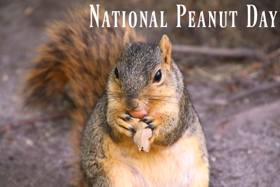 national peanut day