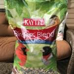 How to Attract Birds to Your Backyard {& Feed Them Right w/ Kaytee Bird Feed}