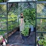 Ask Mavis – Greenhouse Gardening , How Lucy's Handling the Move, Dealing with Paint Fumes and More