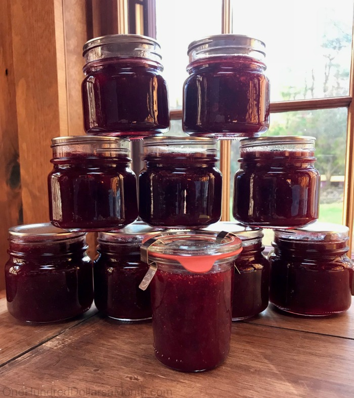 Spiced Christmas Jam - One Hundred Dollars a Month
