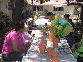 Potted Plant Making