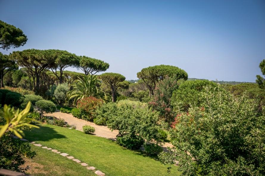 Fauna and Flora at Villa Marie Saint Tropez