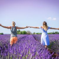 15 Photos that will inspire you to visit the Lavender Fields