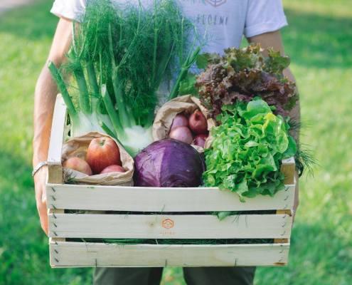 consegna-a-domicilio-frutta-verdura