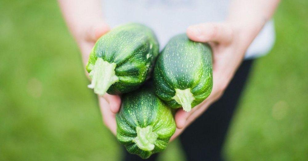 Ecommerce prodotti agricoli