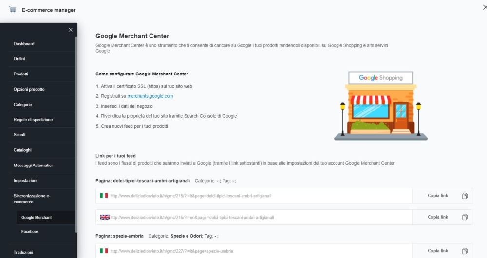 Feed Google Shopping su One Minute Site
