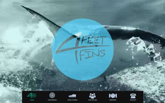 Feet for Fins Shark Website