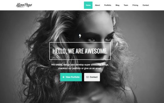 MicroPage | One Page Wordpress Theme