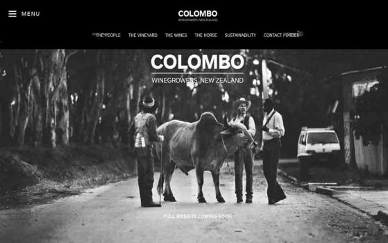 colombo one page websites