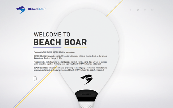 Beach Boar website