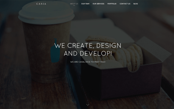 Casia - Minimal Clean Wordpress Theme