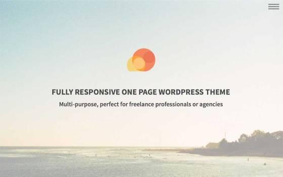 one page wordpress theme
