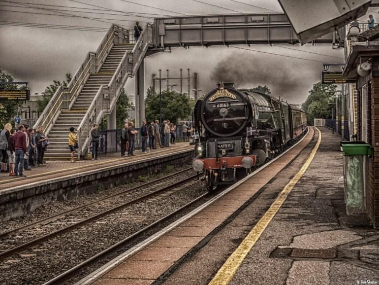 Steam Train: Peppercorn Class A1 - 60163 Tornado Steaming through Thatcham.