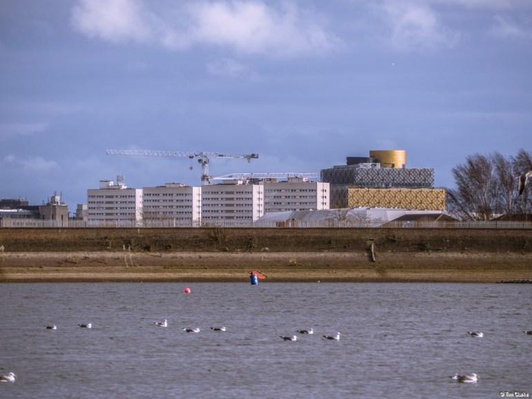 Edgbaston Reservoir: View across into Birmingham City Centre.