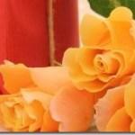 商用利用可能な無料写真素材サイト5選