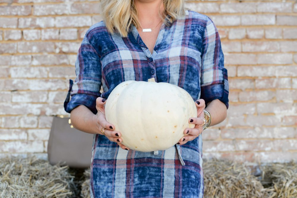 white pumpkin and plaid shirtdress