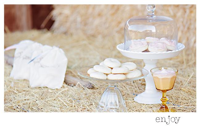 Paradise Sugar Cookies Recipe