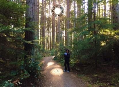 naturewoods