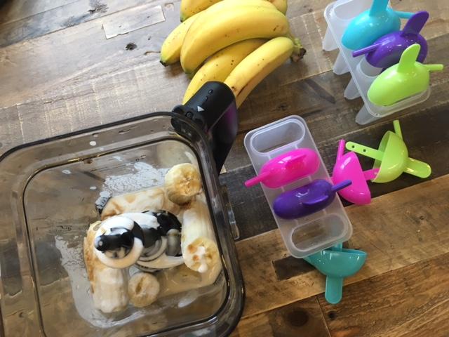 Creamy Banana Coconut Popsicles {Recipe}