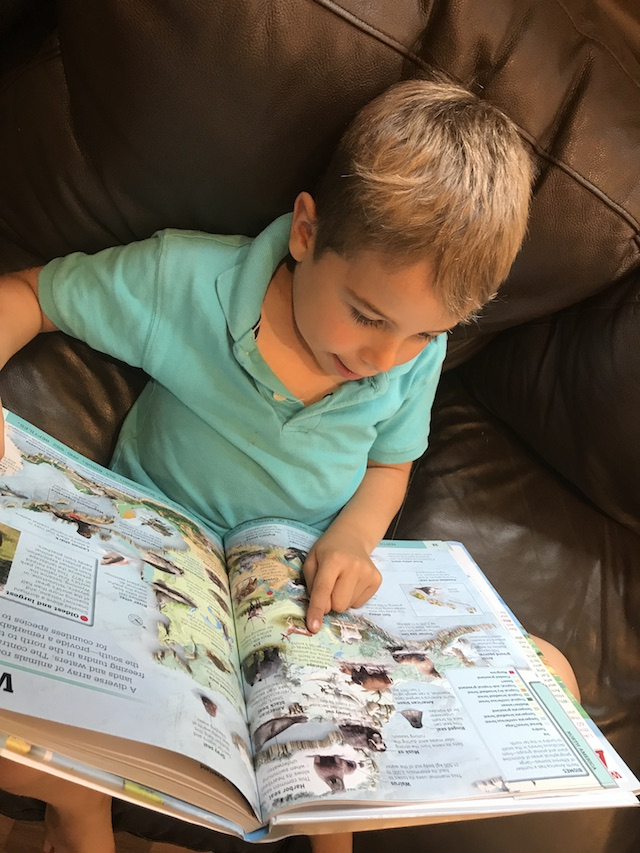 Three Must Have Books for Back to School