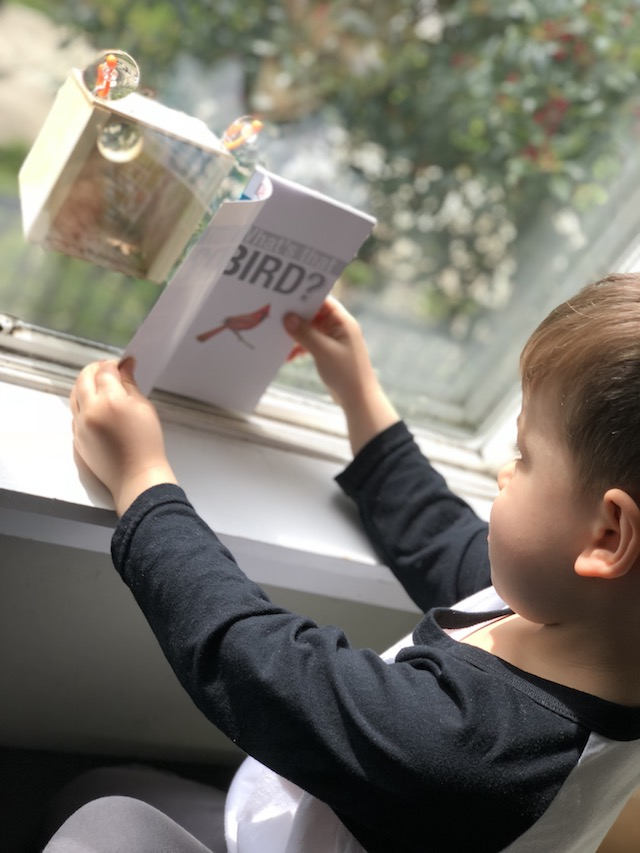 5 NEW Spring Book Recommendations For Your Kid's Home Library {Giveaway}