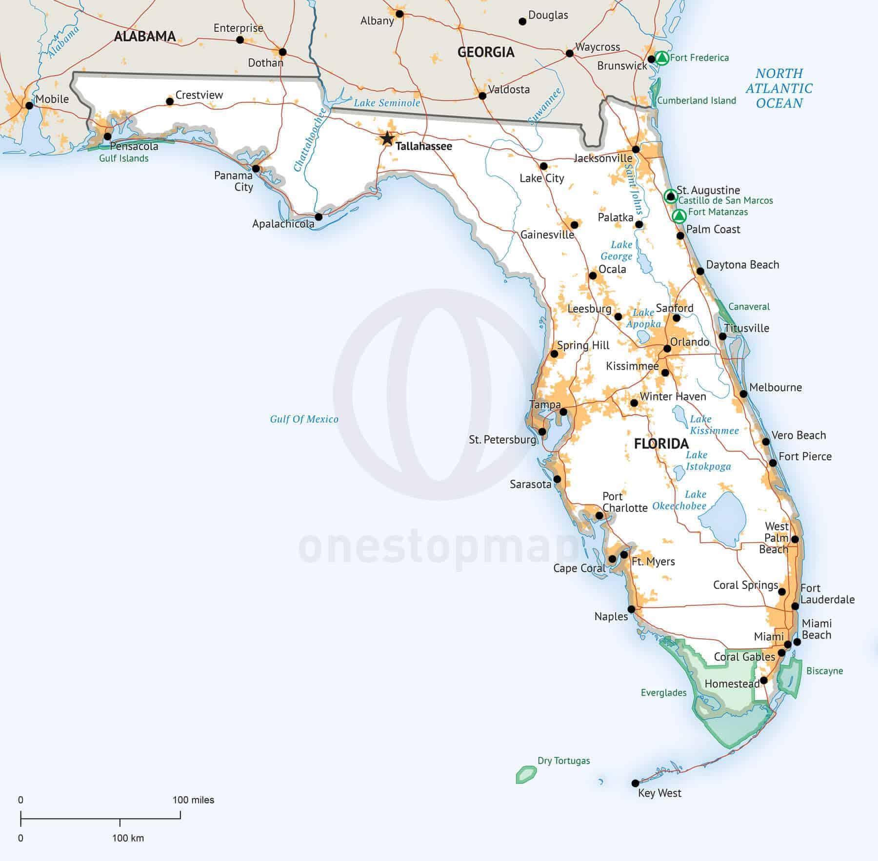 Stock Vector Map Of Florida