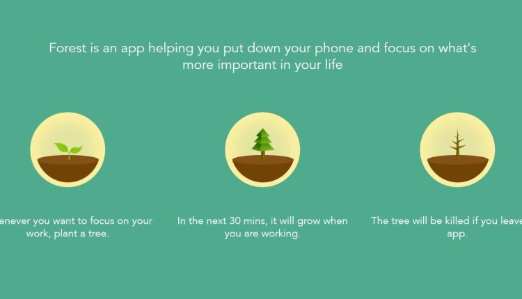 forest-app-windows-store