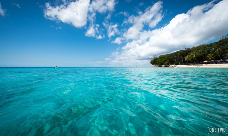 Caribbean sea ocean teal water on palm tree island