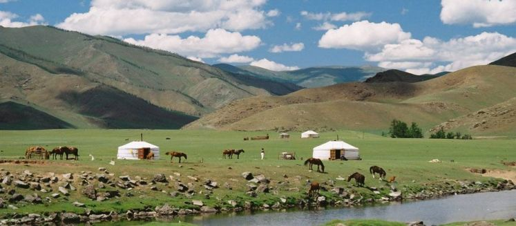 how to plan a trip to mongolia