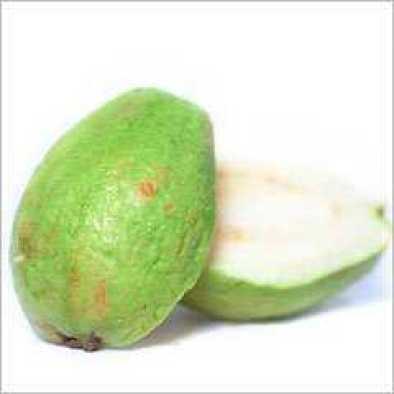 Amazing Wonder- Guava