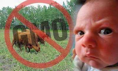 Avoid Eating GMO Food Products