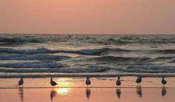 Haven't Been to These Beaches, Then You Haven't Really Been to Goa