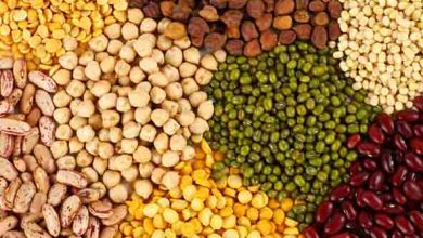 Indian Government releases 160 Thousand Tons of seized pulses