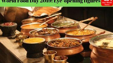 world food day 2019 theme