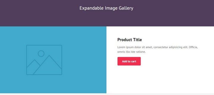expandable-image-gallery 15+ Great jQuery Images Gallery Plugins To Showcase Your Work