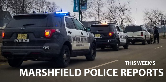 police reports marshfield wi