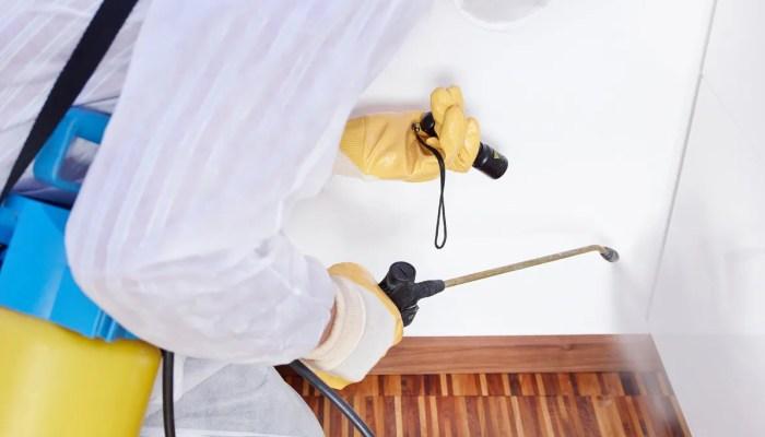 Bestrijder in pak met bestrijdingsapparatuur voor bestrijding tegen bedwantsen in huis.