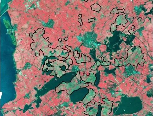 Schokkende satellietbeelden tonen muizenoverlast aan in Friesland