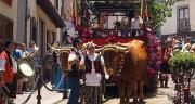 San Isidro por el mundo y por media España: las otras celebraciones