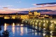 De Córdoba a Granada : la ruta del Califato